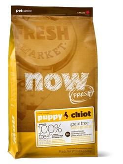 NOW Natural Holistic - Сухой корм беззерновой для щенков (с индейкой, уткой и овощами) Fresh Puppy Recipe Grain Free - фото 17329