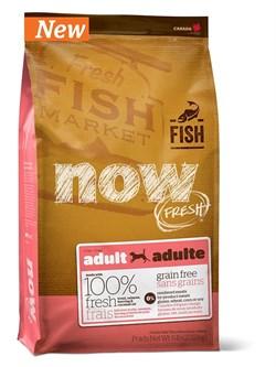 NOW Natural Holistic - Сухой корм беззерновой для взрослых собак для чувствительного пищеварения (с форелью и лососем) Grain Free Fish Adult Recipe - фото 17354