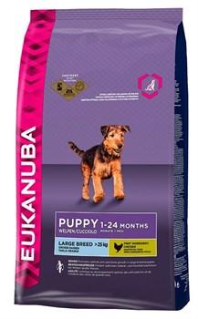 Eukanuba - Сухой корм для щенков крупных пород (курица) Dog Puppy & Junior Large Breed - фото 17372