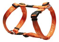 Rogz - Шлейка, оранжевый (размер XL (60-100 см), ширина 2,5 см) ALPINIST H-HARNESS - фото 19954