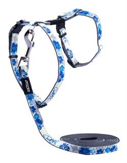 """Rogz - Набор для кошек """"Синие цветы"""" (шлейка (24-40см) + поводок (длина 1,8м)) GLOWCAT HARNESS AND LEAD SET BLUE - фото 20442"""