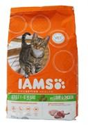 Iams - Сухой корм для взрослых кошек (с ягненком) ProActive Health Adult with Lamb