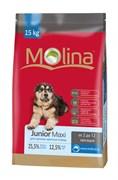 Molina - Сухой корм для щенков крупных пород Junior Maxi
