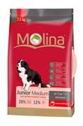 Molina - Сухой корм для щенков средних пород Junior Medium