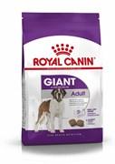 Royal Canin - Сухой корм для собак гигантских пород ADULT GIANT