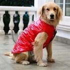 Одежда для собак крупных пород.