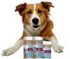 Теперь вы можете купить у нас мультивитамины 8in1 для собак всех возрастов.