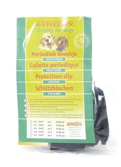 Benelux - Защитные трусики для собак 61/70 см - фото 18743