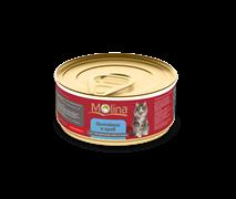 """Molina - Консервы для кошек """"Цыпленок с крабами в желе"""""""
