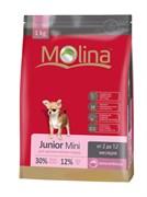 Molina - Сухой корм для щенков мелких пород Junior Mini