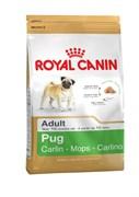 Royal Canin - Сухой корм для собак породы мопс