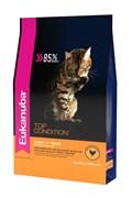 Eukanuba - Сухой корм для взрослых кошек (с домашней птицей) Cat