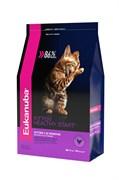 Eukanuba - Сухой корм для котят (с домашней птицей) Cat