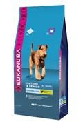 Eukanuba - Сухой корм для пожилых собак крупных пород Dog