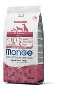 Monge - Корм для собак всех пород (говядина с рисом) Dog Monoprotein All Breeds Beef and Rice