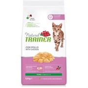 Trainer - Сухой корм для молодых кошек Natural Young Cat
