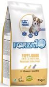 Forza10 - Сухой корм для щенков мелких и средних пород (курица и картофель) Puppy Junior Maintenance